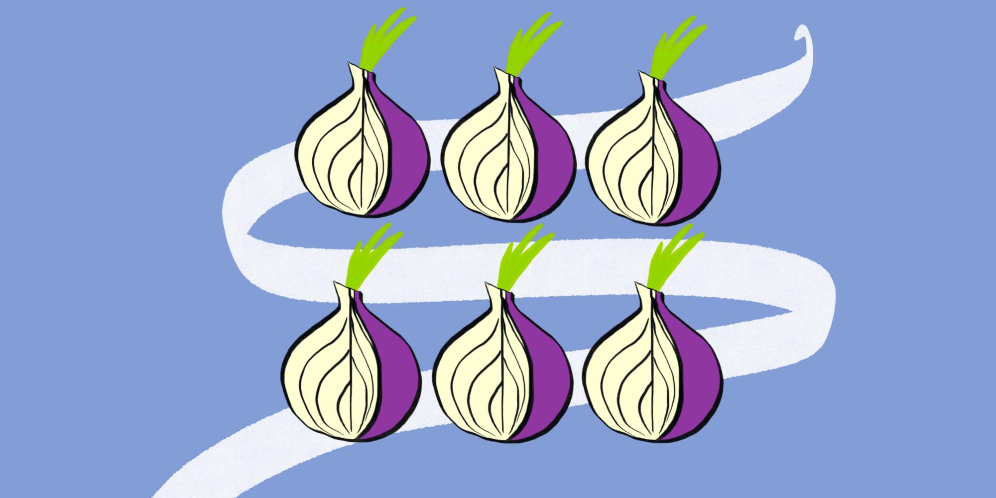 «Я тебя по IP вычислю»: как хакеры рассекречивают звенья цепи Tor