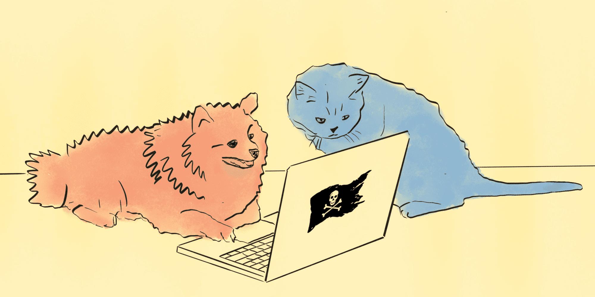 7 шагов для хакерской атаки на ближайшие точки Wi-Fi — IT-МИР. ПОМОЩЬ В IT-МИРЕ 2021