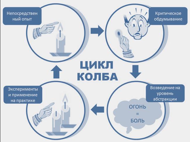 Как быстро учиться по методу Колба