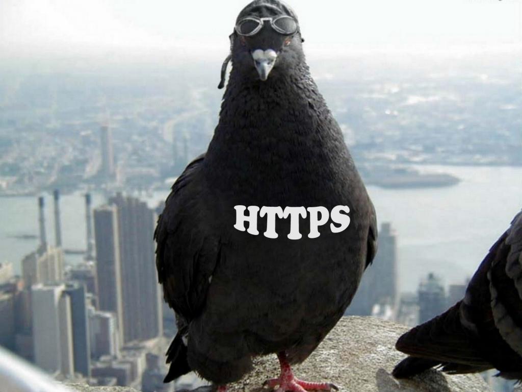HTTPS и его внутреннее устройство-2