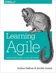 Погружаемся в Agile