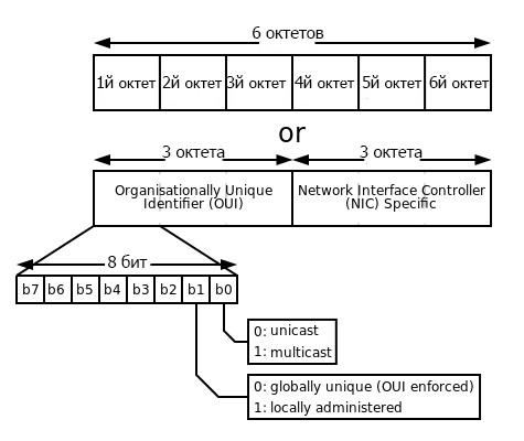Структура mac-adress