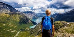 обучение фронтэнд-разработке путь длиной в жизнь