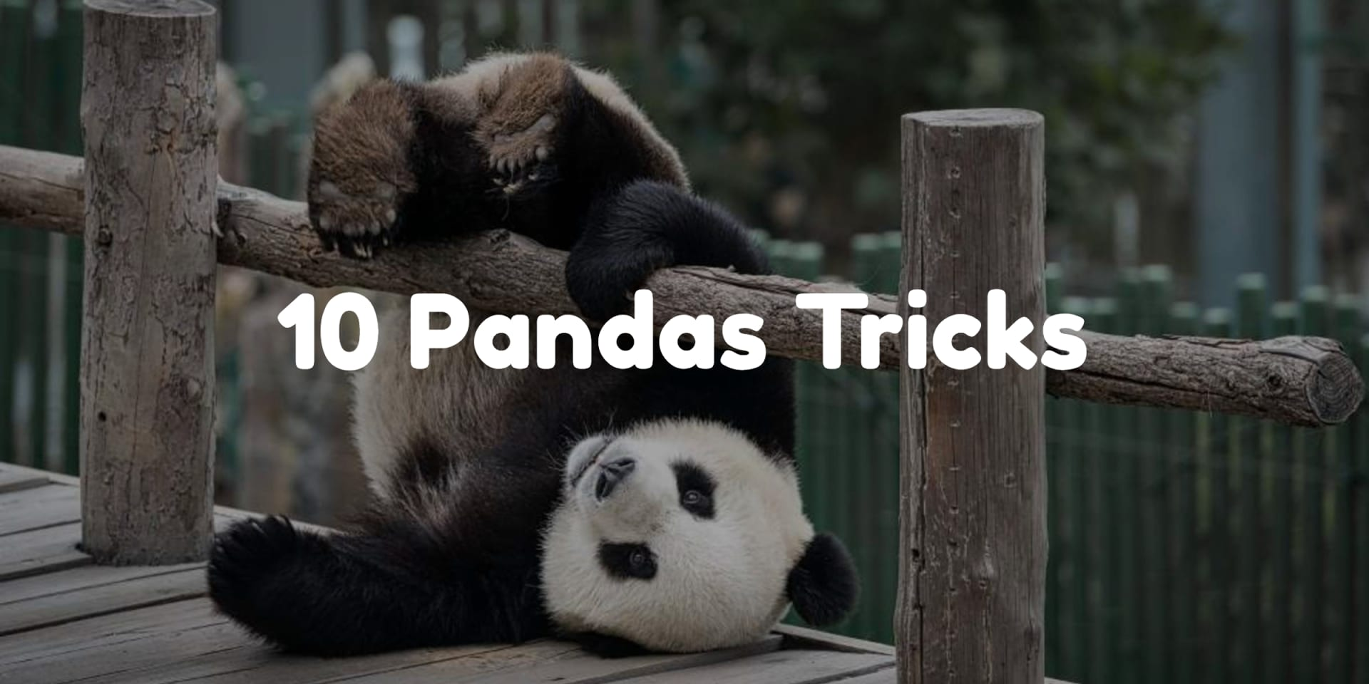 10 трюков библиотеки Python Pandas, которые вам нужны